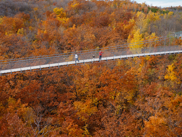 Autumn View from Suspension Bridge 600x450.jpg